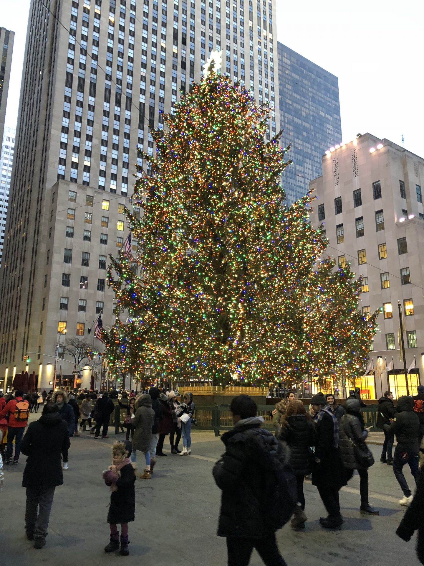A photo of the Rockefeller Centre Christmas tree