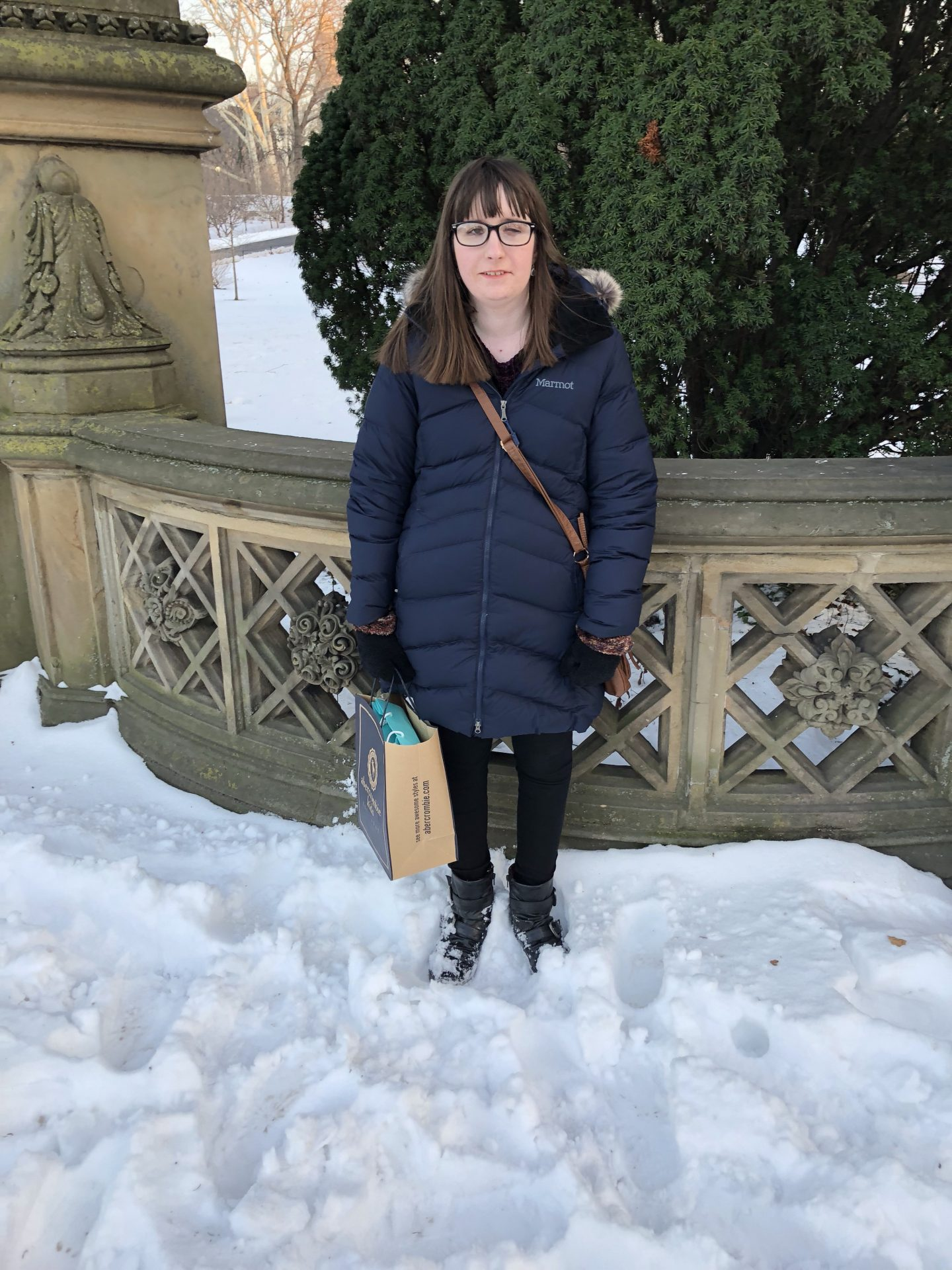 A photo of Holly in a snowy Central Park